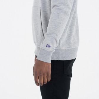 New Era Team Logo Charlotte Hornets Hoodie ''Grey''
