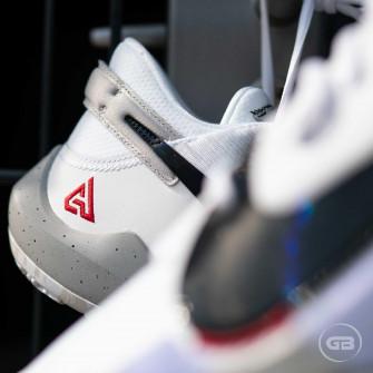 Nike Zoom Freak 2 ''White Cement''