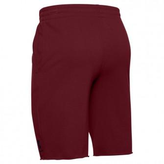 UA Sportstyle Terry Shorts ''Bordeaux''